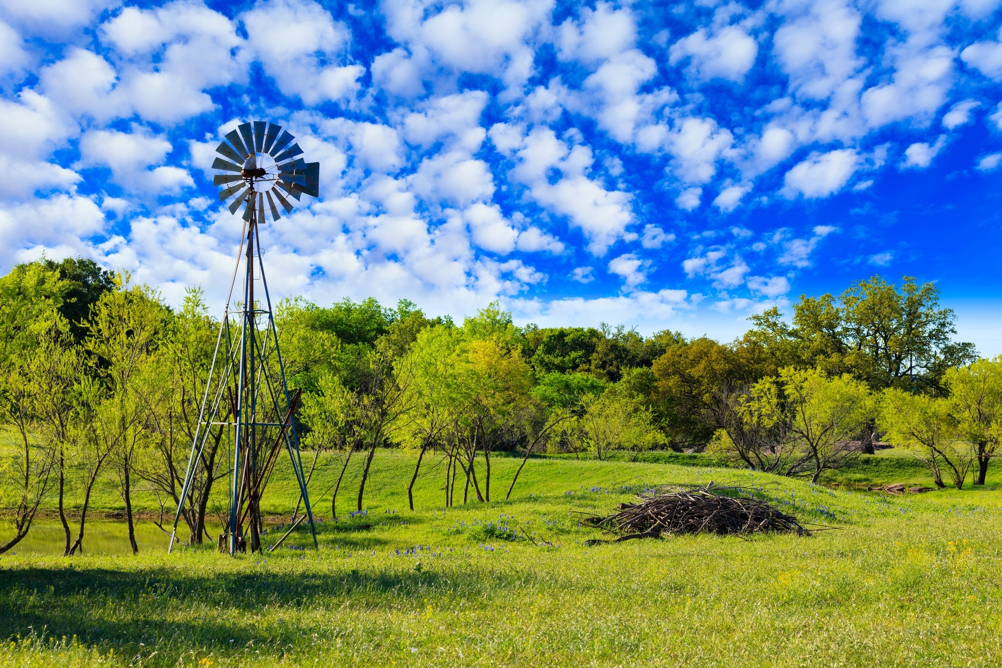 Texas rural home telephone service